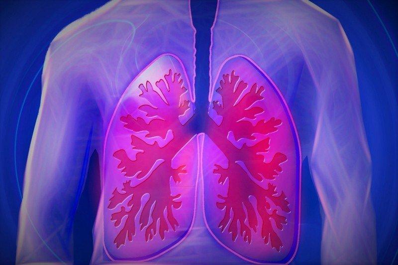 können asthmatiker gut in franken leben