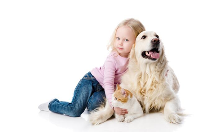Neurodermitis und Tiere