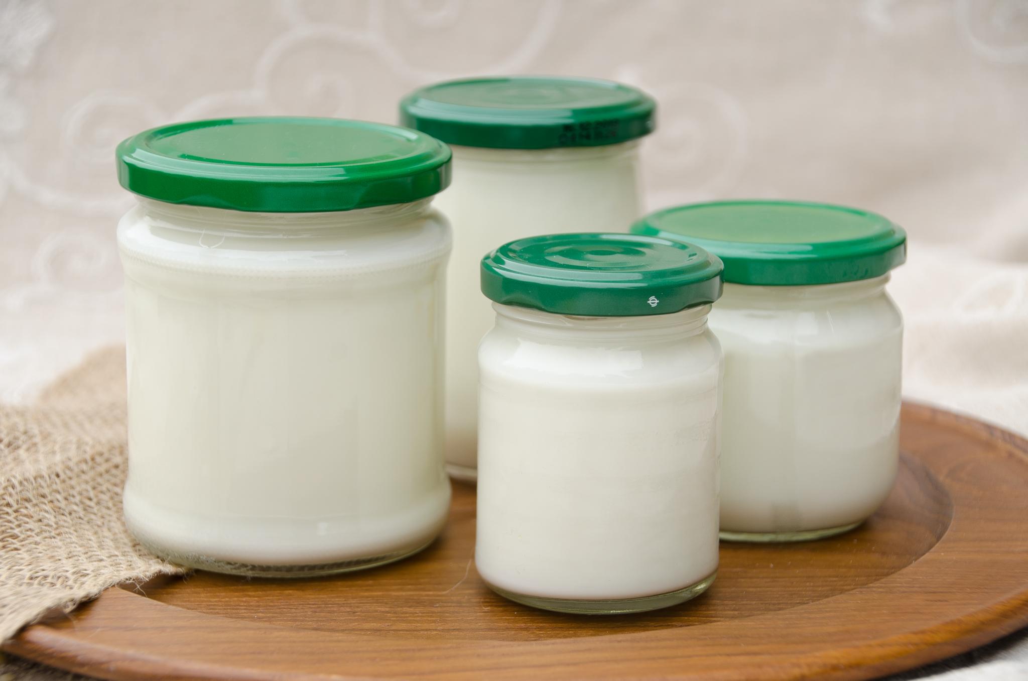 Joghurt pur selbstgemacht