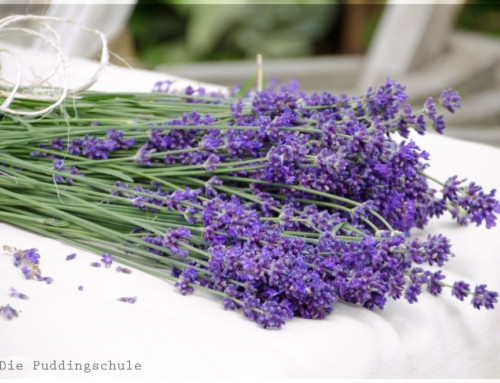 Lavendel – Eine Pflanze für (fast) alles