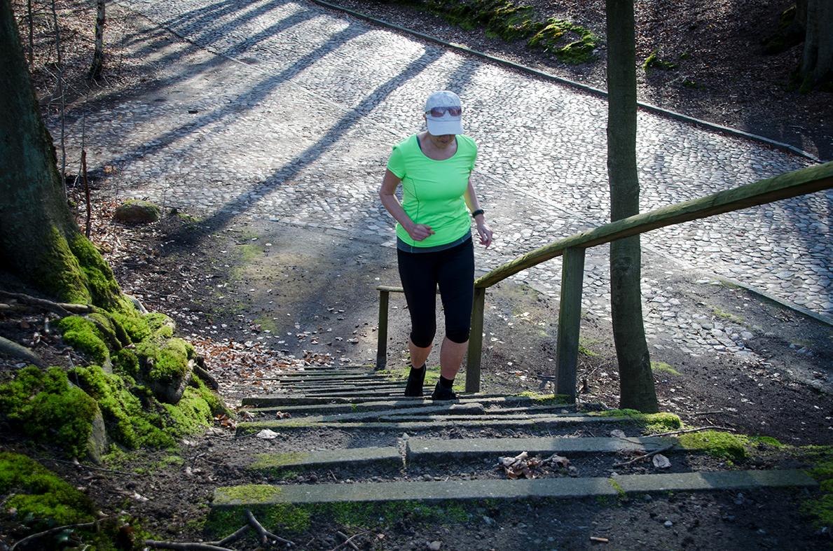 Treppensteigen im Wald